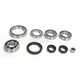 Front Bearing and Seal Kit for CF Moto - 1205-0265