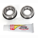 Steering Stem Bearing Kit - PWSSK-H21-000