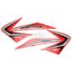 11 OEM-Style Tank/Shroud Graphic - 14-05334