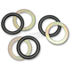 Shock Thrust Bearing Kit - PWSHTBY04-001