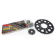 Natural Kawasaki 520 XSO Chain and Sprocket Kit  - 2062-100E