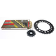 Gold Honda GB520GXW Acceleration Chain with Steel Sprocket - 1102-049PG