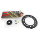 Gold Honda GB520GXW Chain and Sprocket Race Kit  - 1102-088DG
