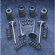 Valve/Spring Kit - 99212