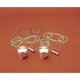 XPS Series Piston Kit - WK1251