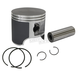 Piston Assembly - 76.5mm Bore - 09-686
