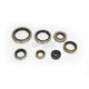 Oil Seal Kit  - 0935-0951