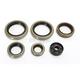 Oil Seal Kit  - 0935-0947