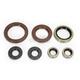 Oil Seal Kit  - 0935-0948