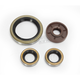 Oil Seal Kit  - 0935-0949