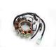 Stator Assembly - SM-01362
