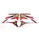 Rockstar Standard Shroud Graphics Kit - 20-14336