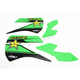 Rockstar Standard Shroud Graphics Kit - 20-14116