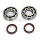 Main Bearing & Seal Kit - K090