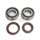 Main Bearing & Seal Kit - K092