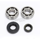 Main Bearing & Seal Kit - K089