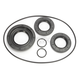 Rear Differential Seal Kit - 0935-0971