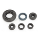 Complete Oil Seal Kit - C3105OS