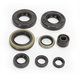 Complete Oil Seal Kit - C3501OS