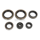 Complete Oil Seal Kit - C3606OS