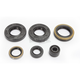 Complete Oil Seal Kit - C7029OS