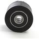 Chain Roller - HO04691-001