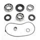 Rear Bearing and Seal Kit - 1205-0266