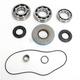 Rear Bearing and Seal Kit - 1205-0267