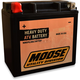 GYZ Factory-Activated AGM Maintenance-Free Battery - 2113-0599