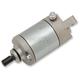 Starter Motor - 2110-0860