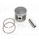 High Performance Piston - 2462M07725