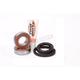 Front Wheel Bearing & Seal Kit - PWFWS-H13-000