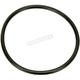 Chain Inspection Cover O-Ring - 11188