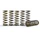 Hi-Temp Clutch Spring Kit - CS189-6-0613