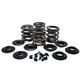 Valve Spring Kit - 20-20450