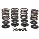 Lightweight Racing Intake/Exhaust Valve Spring Kit (.600
