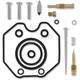 Carb Repair Kit - 1003-0621