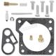 Carb Repair Kit - 1003-0829