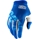 Youth Blue I-Track Gloves