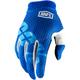 Blue I-Track Gloves