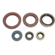 Complete Oil Seal Kit - C3595OS