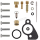Carb Repair Kit - 1003-0521