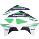 Green/Black/White EVO15 Graphics Kit  - 21-01122