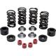 Lightweight Racing Intake/Exhaust Valve Spring Kit (Titanium) - 30-32400