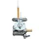 Fuel Valve Kit - FS101-0144