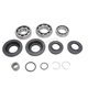 Rear Differential Bearing & Seal Kit - 25-2111