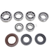 Rear Differential Bearing & Seal Kit - 1205-0287