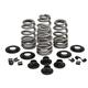 .610 in. Beehive Intake/Exhaust Spring Kit - 20-21300