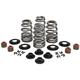 .660 in. Beehive Intake/Exhaust Spring Kit - 20-21550