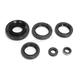 Engine Oil Seal Kit - 0935-0851